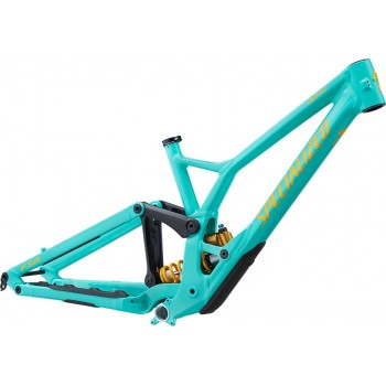 2020 SPECIALIZED DEMO RACE 29er FRAME